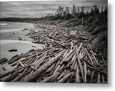 Shoved Ashore Driftwood  Metal Print by Roxy Hurtubise