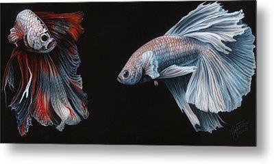 Siamese Fighting Fish  Metal Print by Wayne Pruse
