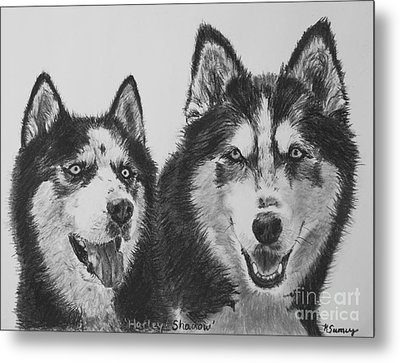 Siberian Husky Dogs Sketched In Charcoal Metal Print