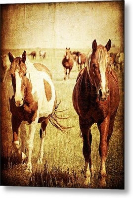 Side By Side Metal Print by Lincoln Rogers