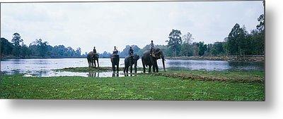 Siem Reap River & Elephants Angkor Vat Metal Print