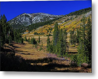 Metal Print featuring the photograph Sierra Fall  by Sean Sarsfield