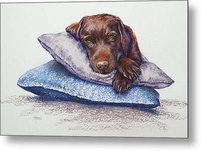 Metal Print featuring the painting Siesta by Cynthia House