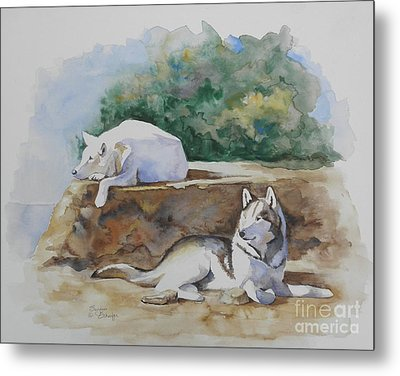 Siesta Time Metal Print by Suzanne Schaefer