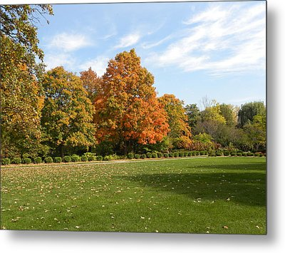 Metal Print featuring the photograph Signs Of Fall by Teresa Schomig