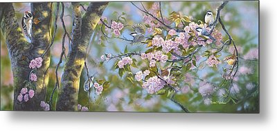 Signs Of Spring Metal Print by Michael Ashmen