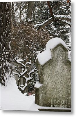 Metal Print featuring the photograph Silence by Melissa Stoudt