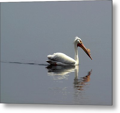 Silent And Reflective Metal Print by Thomas Young