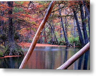 Metal Print featuring the photograph Silent Colors by David  Norman