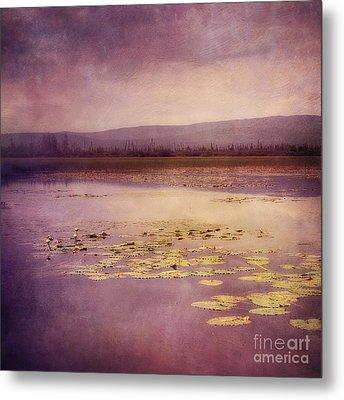 Silent Water  Metal Print