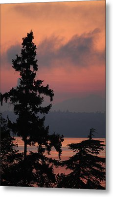 Metal Print featuring the photograph Silhouette At Sunrise by E Faithe Lester