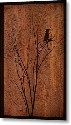 Metal Print featuring the photograph Silhouette by Barbara Manis