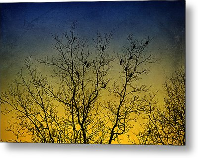 Silhouette Birds Sequel Metal Print