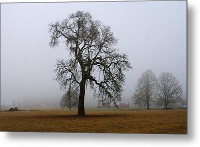Silhouette In Fog Metal Print by Harold Greer