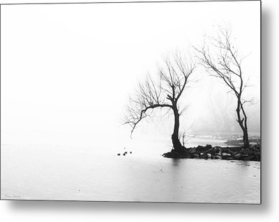 Metal Print featuring the photograph Silhouette In Fog by Yvonne Emerson AKA RavenSoul