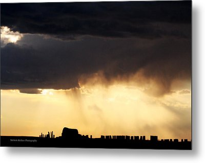 Silhouette Metal Print by Michele Richter