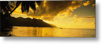 Silhouette Of Palm Trees At Dusk, Cooks Metal Print