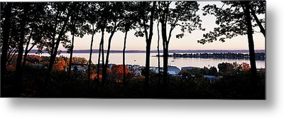 Silhouette Of Trees At Dusk, Little Metal Print