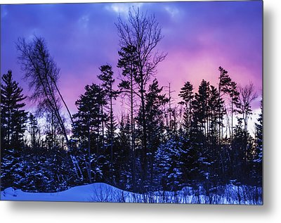 Silhouette Of Trees During A Colourful Metal Print by Jacques Laurent