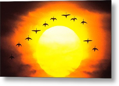 Silhouetted Birds In Sunset Metal Print