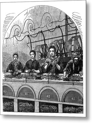 Silk Spinning Metal Print by Science Photo Library
