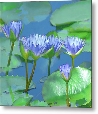 Metal Print featuring the photograph Silken Lilies by Holly Kempe