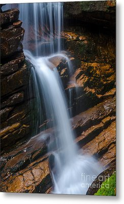 Silky Smooth Metal Print by Mike Ste Marie