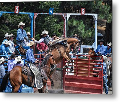 Metal Print featuring the photograph Silver Buckle Chute #4 by Jan Davies