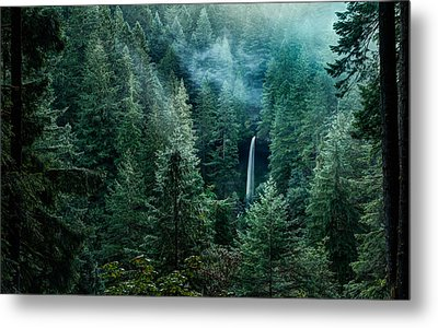 Metal Print featuring the photograph Silver Falls State Park by Brian Bonham