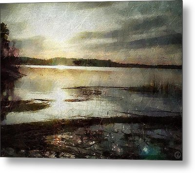 Silver Morning Metal Print by Gun Legler