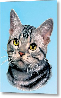 Silver Tabby Kitten Original Painting For Sale Metal Print by Bob and Nadine Johnston