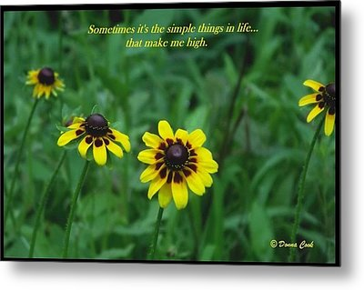 Simple Things Metal Print by Donna Cook
