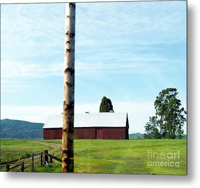 Metal Print featuring the photograph Simplicity by Bobbee Rickard