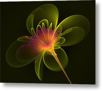 Single Flower Metal Print by Svetlana Nikolova