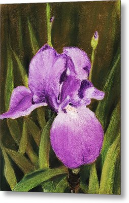 Single Iris Metal Print by Anastasiya Malakhova