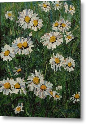 Singleton Daisies Metal Print by Phil Chadwick