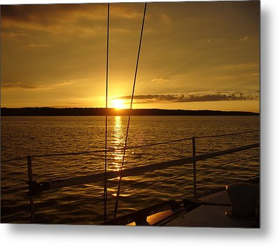 Metal Print featuring the photograph Stay Golden by Deena Stoddard