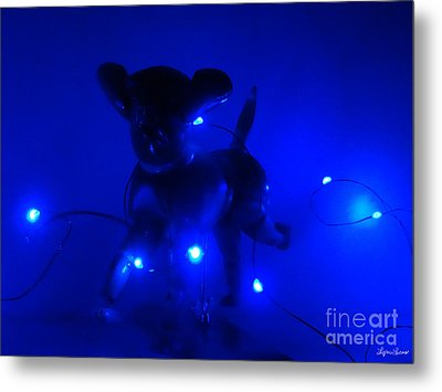 Sirius Dog Star Metal Print by Lyric Lucas