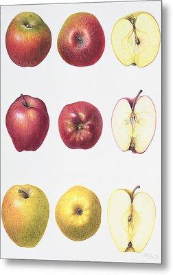 Six Apples Metal Print by Margaret Ann Eden