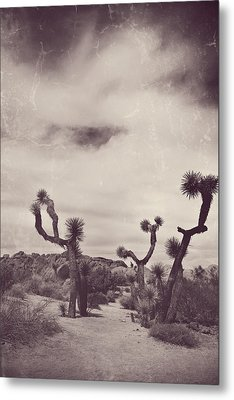 Skies May Fall Metal Print by Laurie Search