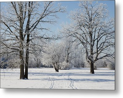 Skiing On A Hoar Frost Morning Metal Print by Rob Huntley