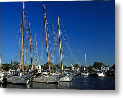 Skipjacks  Metal Print