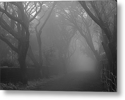 Metal Print featuring the photograph Skc 0077 A Romatic Path by Sunil Kapadia