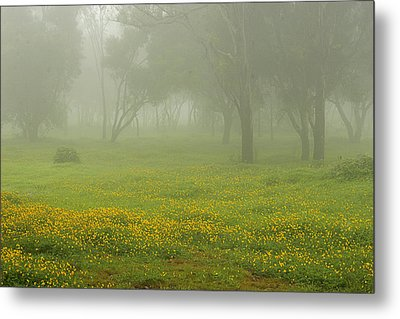 Metal Print featuring the photograph Skc 0835 Romance In The Meadows by Sunil Kapadia