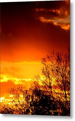 Sky Ablaze Metal Print by Russell  King
