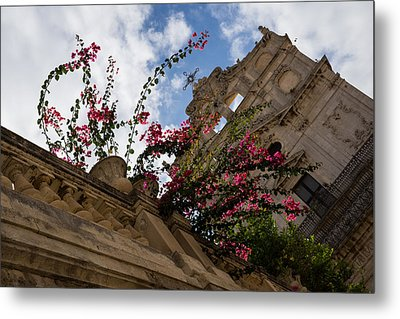 Metal Print featuring the photograph Sky Blossoms by Georgia Mizuleva