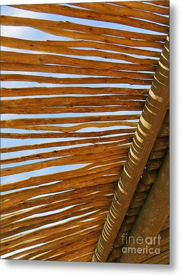 Metal Print featuring the photograph Sky-lined  by Joy Hardee
