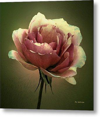 Skyblue Pink Metal Print by RC deWinter