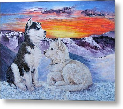 Sled Dog Dreams Metal Print by Karen  Peterson