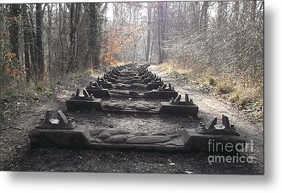 Sleepers In The Woods Metal Print by John Williams